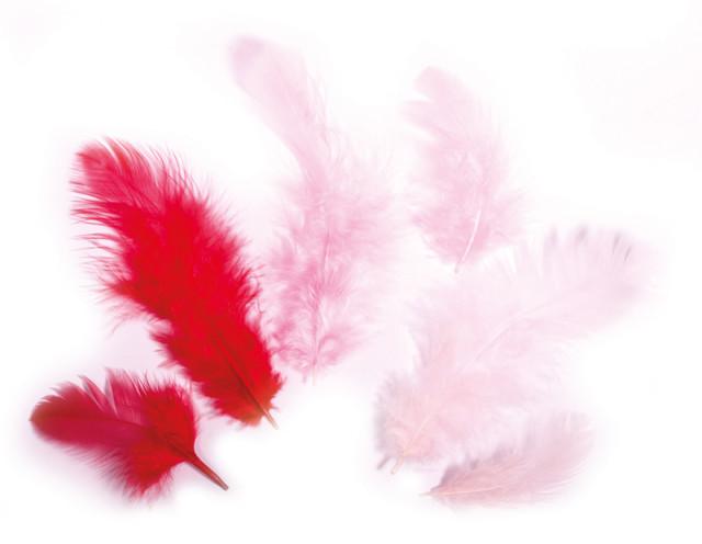 Rayher Перья декоративные, смесь оттенков, 3-10 см, 10 г, оттенки красного 85 117 18