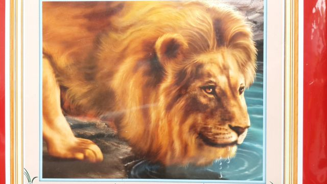 "Die Lian Hua Набор для выш. А452 ""Лев на водопое"""